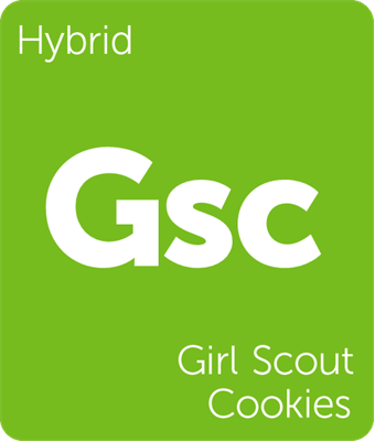 Best Weed for Sex Masturbation Girl Scout Cookies
