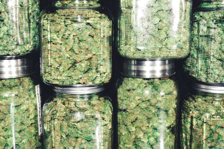 Coalinga dispensary cannabis in jars