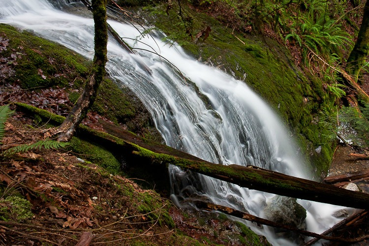 Things to Do in King County Coal Creek Falls Trail