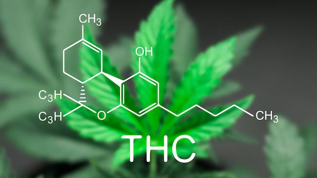 buying cannabis thc molocule