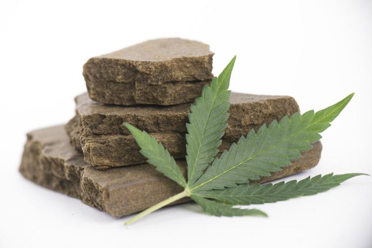 Cannabis Concentrates Hash