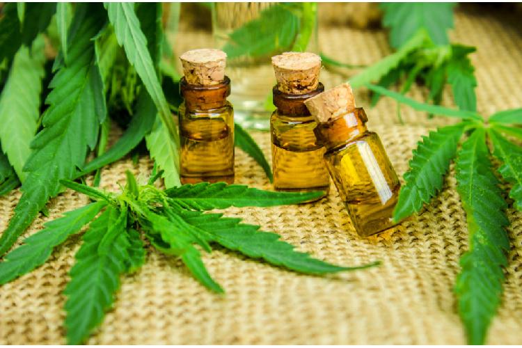 Cannabis Tinctures bottles near leaf