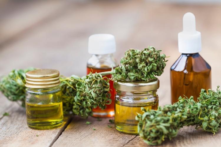 Iowa Medical Cannabis 4