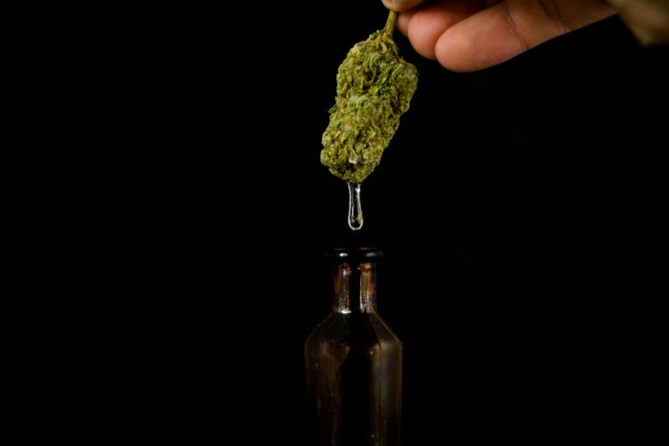 best cbd strains oil from flower