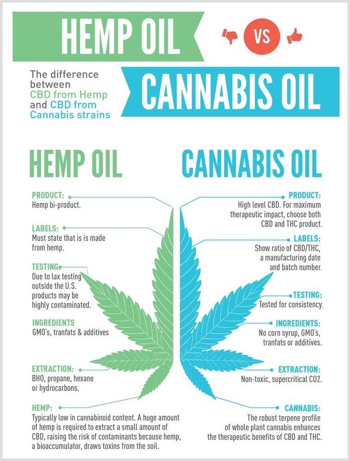 hemp cbd vs cannabis cbd infographic