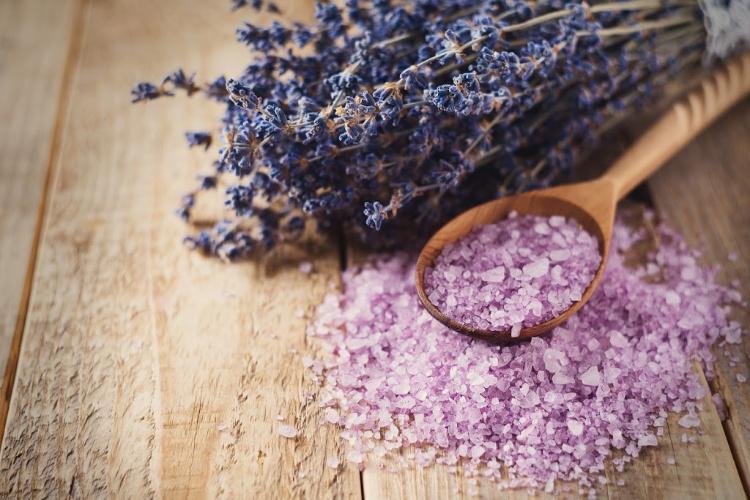 best terpenes lavender