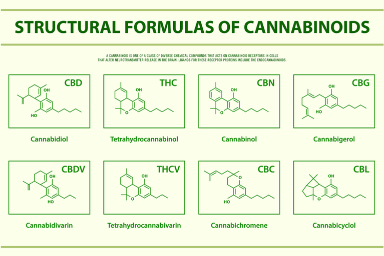 CBN cannabinoids structure