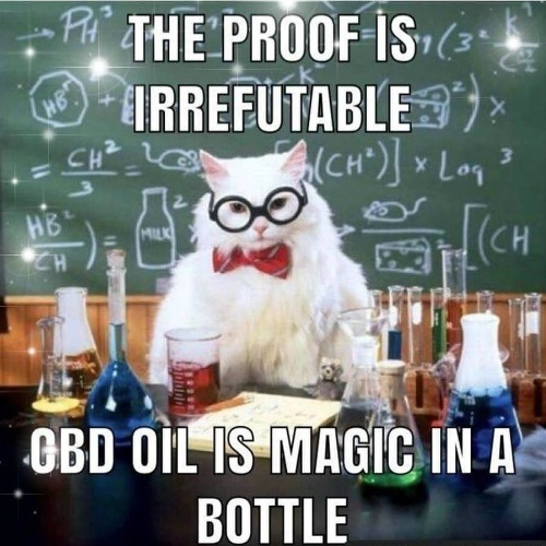 cbd oil memes 1