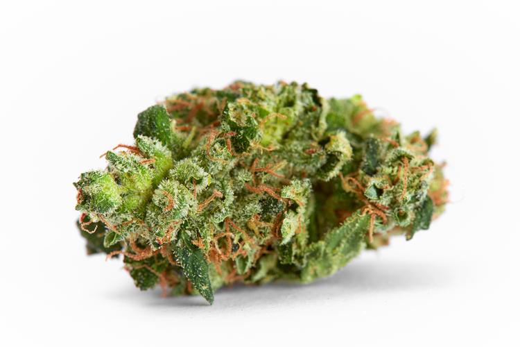 how to balance a high cbd-rich strain