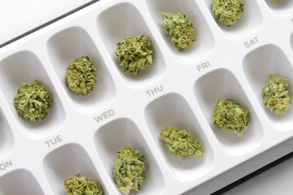 cannabis dosing