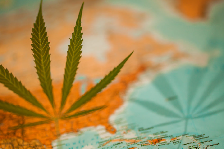 traveling with cannabis