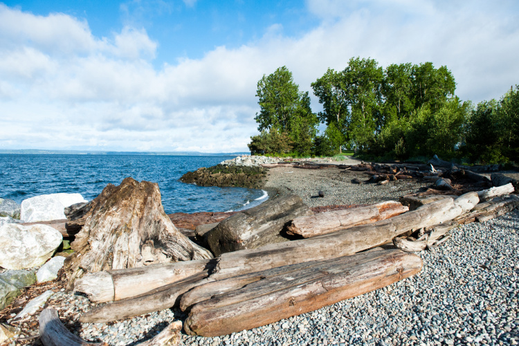 Things to do in Belltown Myrtle Edwards Park