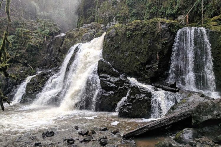 Hiking in Washington: Little Mashel Falls