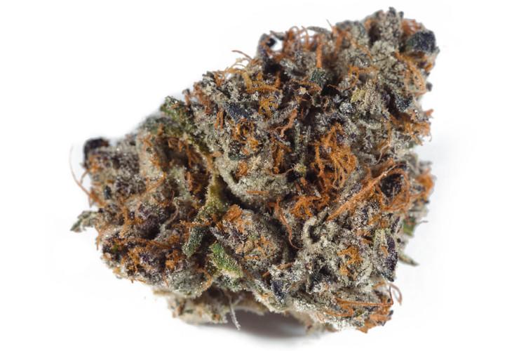 fruity cannabis strains Sherbet by Gabriel