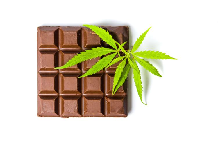 Cannabis Chocolate 3