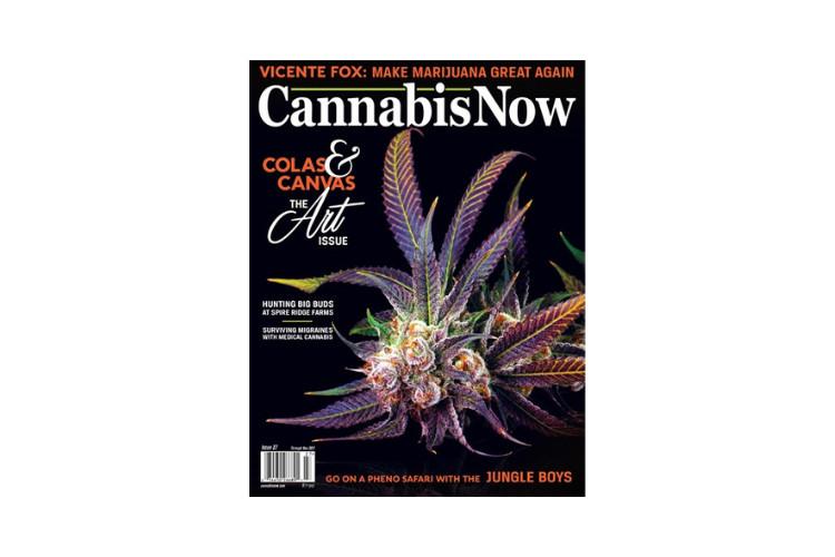 Cannabis Magazines Cannabis Now