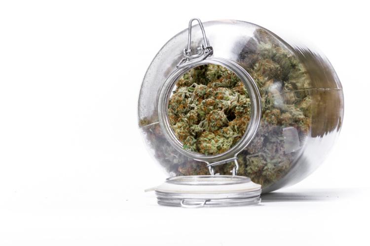 cannabis shelf life 3
