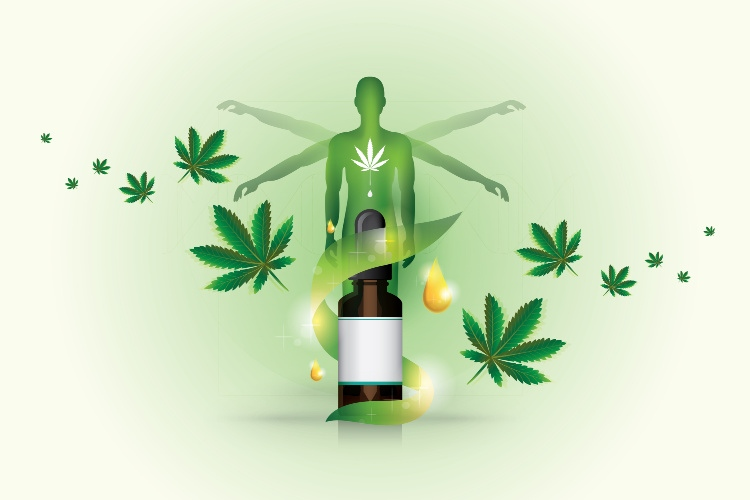 How Long Does CBD Stay in Your System 1