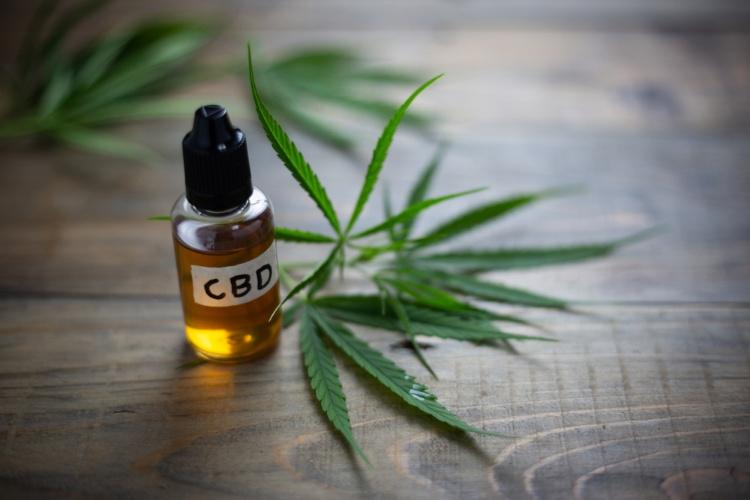 cannabis dinner CBD