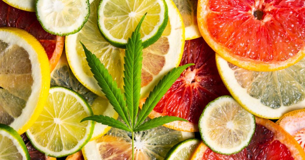citrus strains